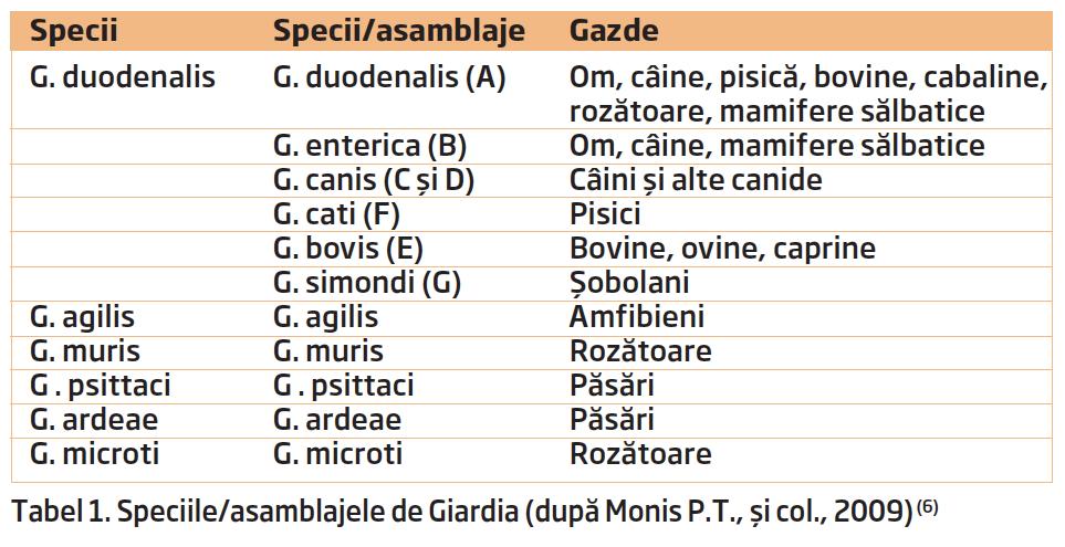 specii de giardia specifice