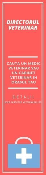 Cauta un cabinet veterinar