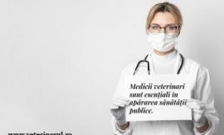 Medicina veterinara, afacere esentiala - Solicitarea CMVRo catre ANSVSA