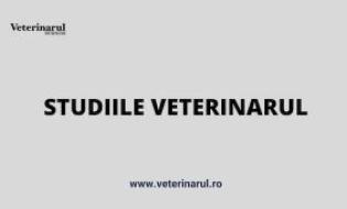 Chestionar privind modul in care a afectat pandemia Covid 19 afacerea dvs in domeniul veterinar