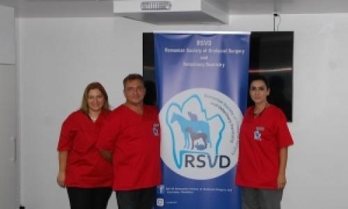 Stomatologia, o specializare vizata de tot mai multi medici veterinari